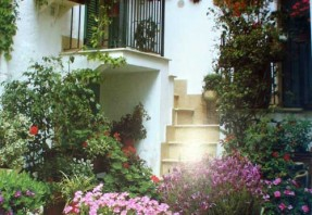Servizi offerti natale rosati - Terrazzi e giardini pensili ...